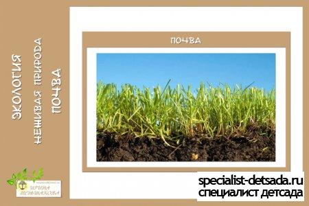 Экология неживая природа почва