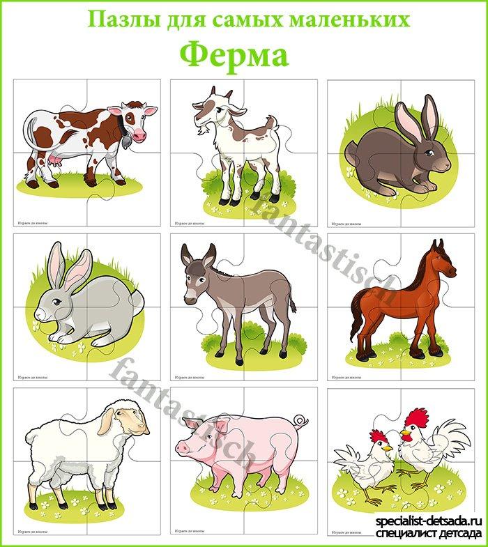 знакомство детей с домашними животными цель